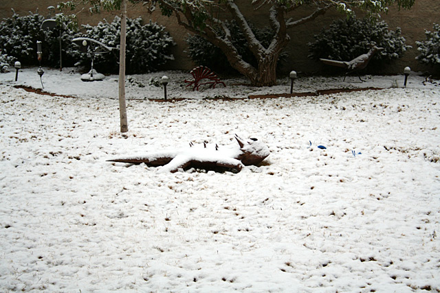 Photo of snow-covered yard art