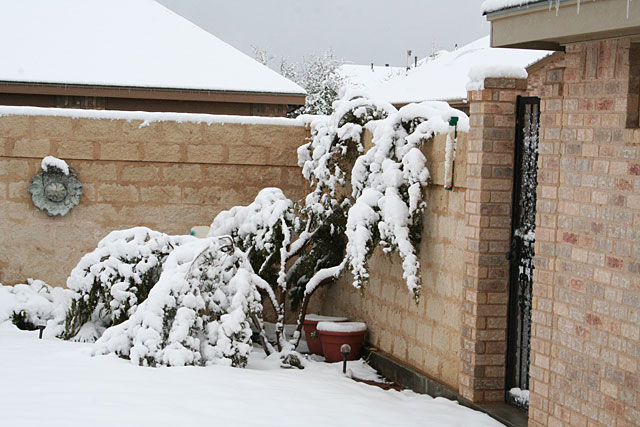 Photos of snow in Midland, Texas