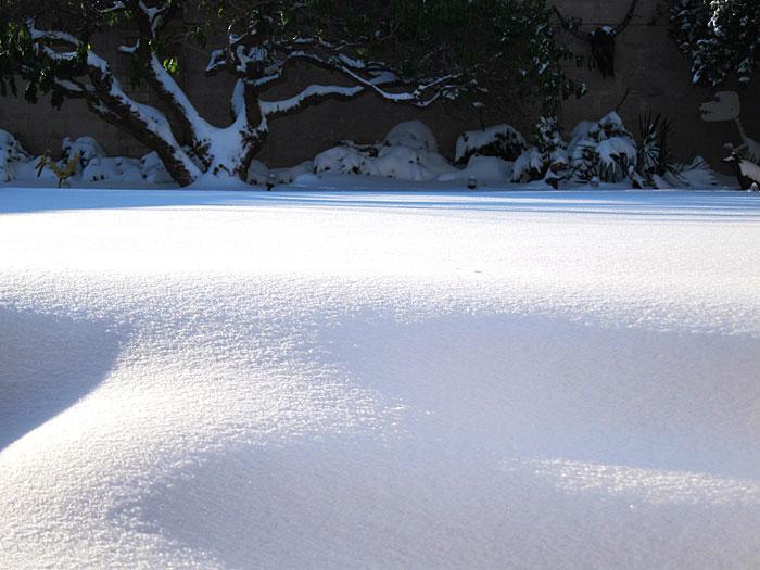 Snow on a sunny morning
